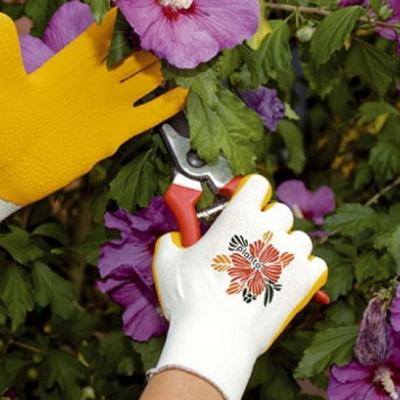 Consejos de nuestros expertos: jardinería