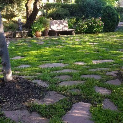 Creación de patio romántico