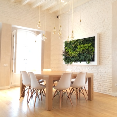 Cuadro vegetal slimgreenwall en vivienda de Sevilla