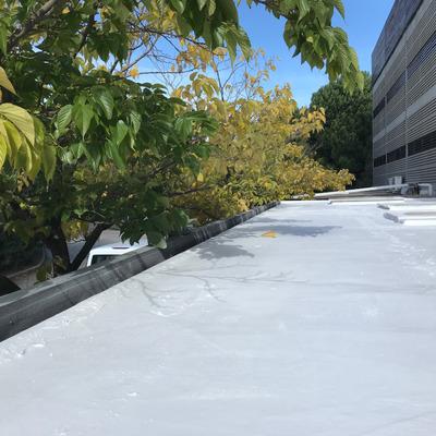 Renovación cubierta