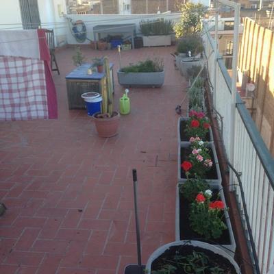 puesta a punto terraza bcn
