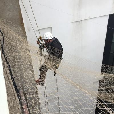 Instalación redes anti palomas