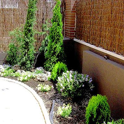 Jardín Chalet pareado