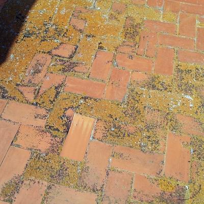 Detalle de pavimento de terraza ANTES