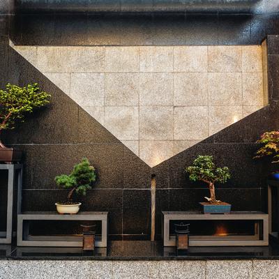 Descubre la bella reforma de una terraza y jardín atemporales