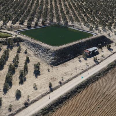 Generación MDT de finca de olivar