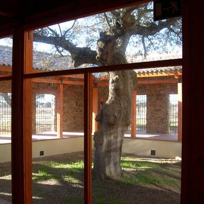 Detalle ventanal de vidrio entre pilares madera