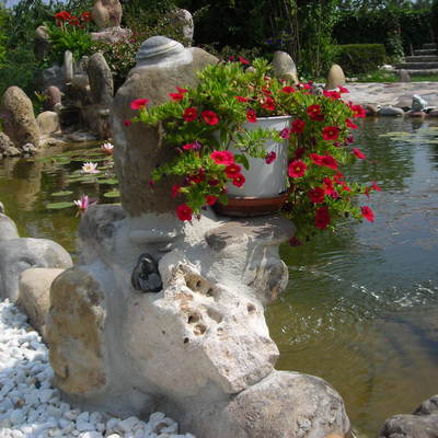 Diseño de estanque con cascada