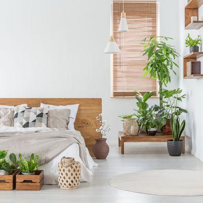 4 motivos para darle importancia a la calidad del aire en tu casa