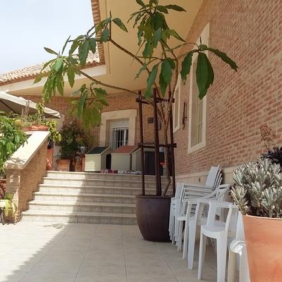 Zona ajardinada y piscina en viv. unif. en Los Girasoles