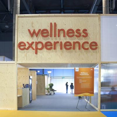 wellness experience