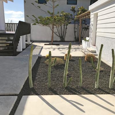 Diseño y reforma de jardín