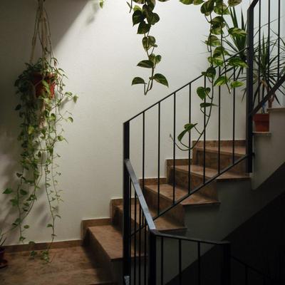 2 Promociones de 10 pisos en barrio la Paz en Zaragoza