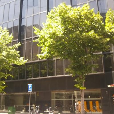 Certificación Eficiencia Energética (CEE) de Despacho