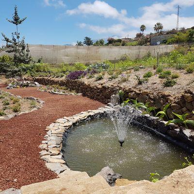 Diseño de Jardín con áridos decorativos y Fuente de agua