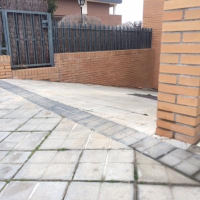Puerta de dos hojas de lama elíptica automatizada y puerta peatonal
