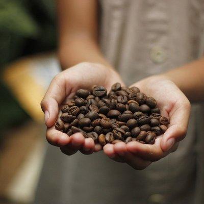 10 Usos alternativos del café que probablemente no conocías