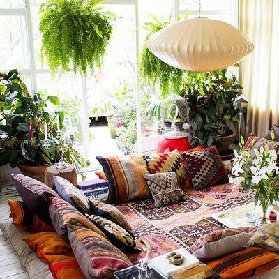 5 Plantas de interior que no podrás matar