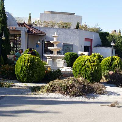 Reformando jardín en un hotel