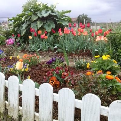 huerto en jardin con valla