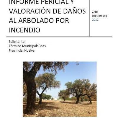 Informe pericial de Incendio Forestal