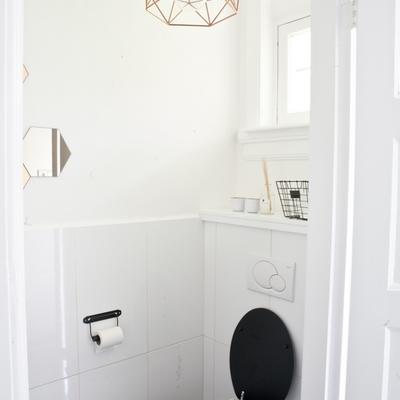 Una moderna casa escandinava y un inquilino de cuatro patas adorable