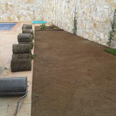 Instalación de tepe y riego automático en Madrid
