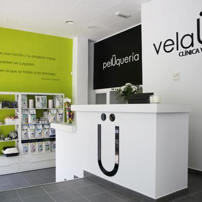 Proyecto Clínica Veterinaria VelaU