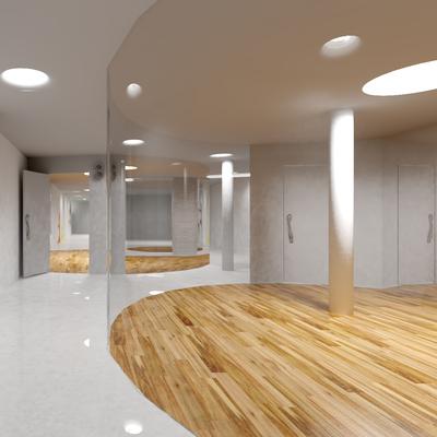 Diseño del gimnasio Haka Gym