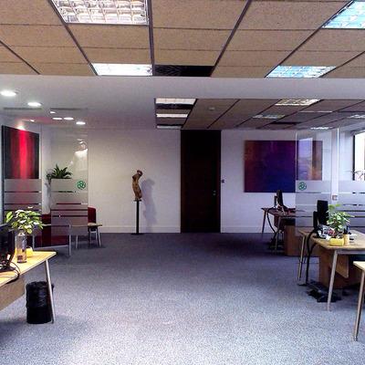 Interior oficina  3- Triodos Bank