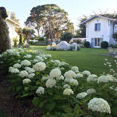 Dime dónde vives y te diré cuál es tu jardín ideal