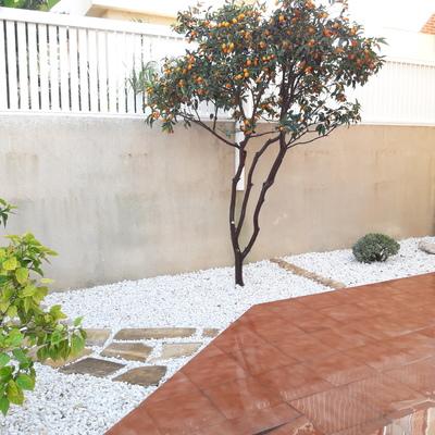 Creacion de jardin