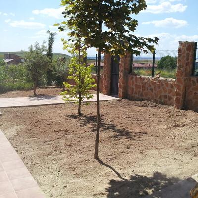 Ideas de riego automatico para inspirarte habitissimo for Instalacion riego automatico jardin