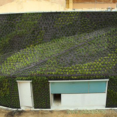 Jardín vertical recién terminado