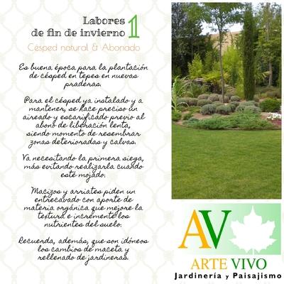 FIN DE INVIERNO: Labores de Limpieza y Mantenimiento en el Jardín.