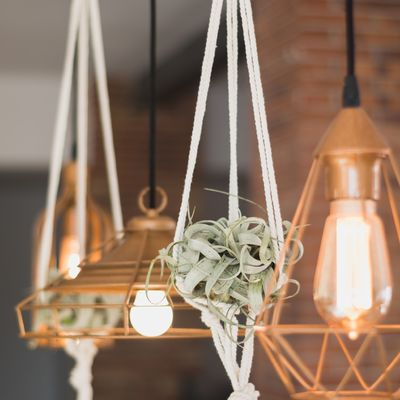 5 ideas para una zona de estar llena de novedades decorativas