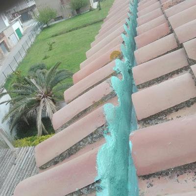 Limpieza tejado y cambio de tejas rotas. (La Garriga)