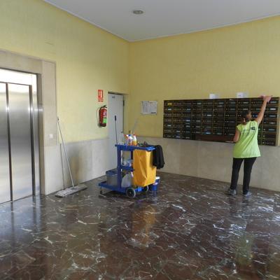 Limpieza y mantenimiento de comunidades, oficnas, piscinas, garajes, cambio de bombillas, abrillantados, etc...