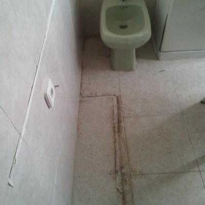 Limpieza integral de baño