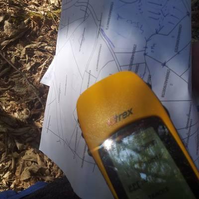 Tasación de madera y localización de montes en La Coruña