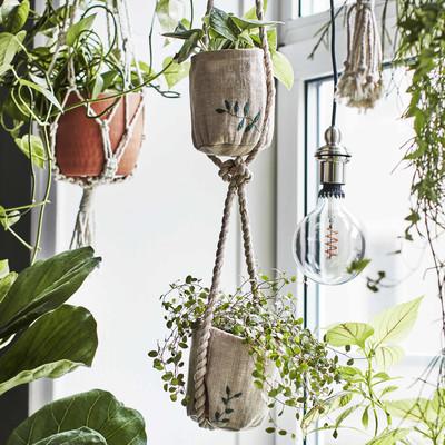 Lo último de IKEA: BOTANISK, una colección limitada para tu jardín interior