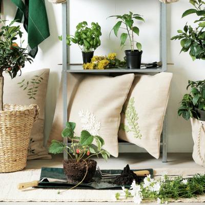 5 complementos a la última para tus plantas