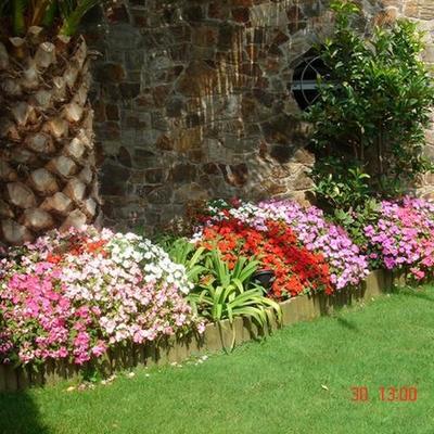 Mantenimiento plantas