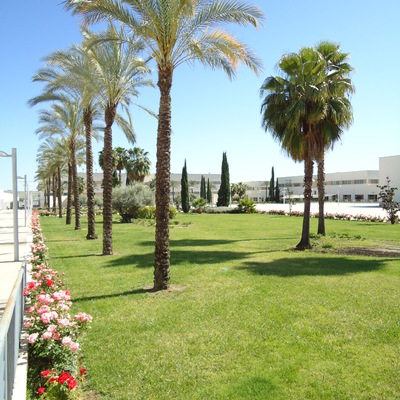 Mantenimiento en  zonas verdes en Parque Joyero  en Córdoba