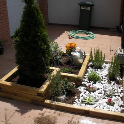 Mini jardin en la entrda