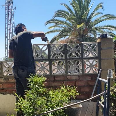 Subida de muro en el Jardin con  celosías