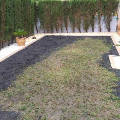 Rediseño y creación de jardín