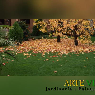 OTOÑO: Labores de Mantenimiento en el Jardín