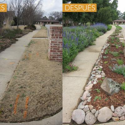 Proyecto de arreglo de jardín antes y despues