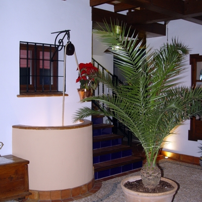Patio vivienda unifamiliar